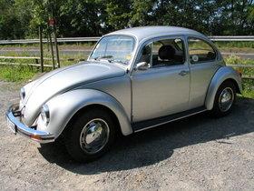 Silver-Bug