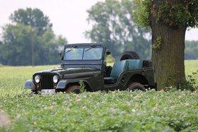 Jeep Willys CJ-5 offen - Männertraum als Wertanlage