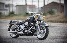 Harley Davidson Softail FLSTC