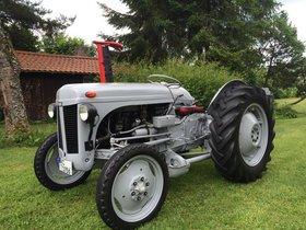 FERGUSON TE-D BJ: 1956, Oldtimer, Restauriert Schlepper/Traktor
